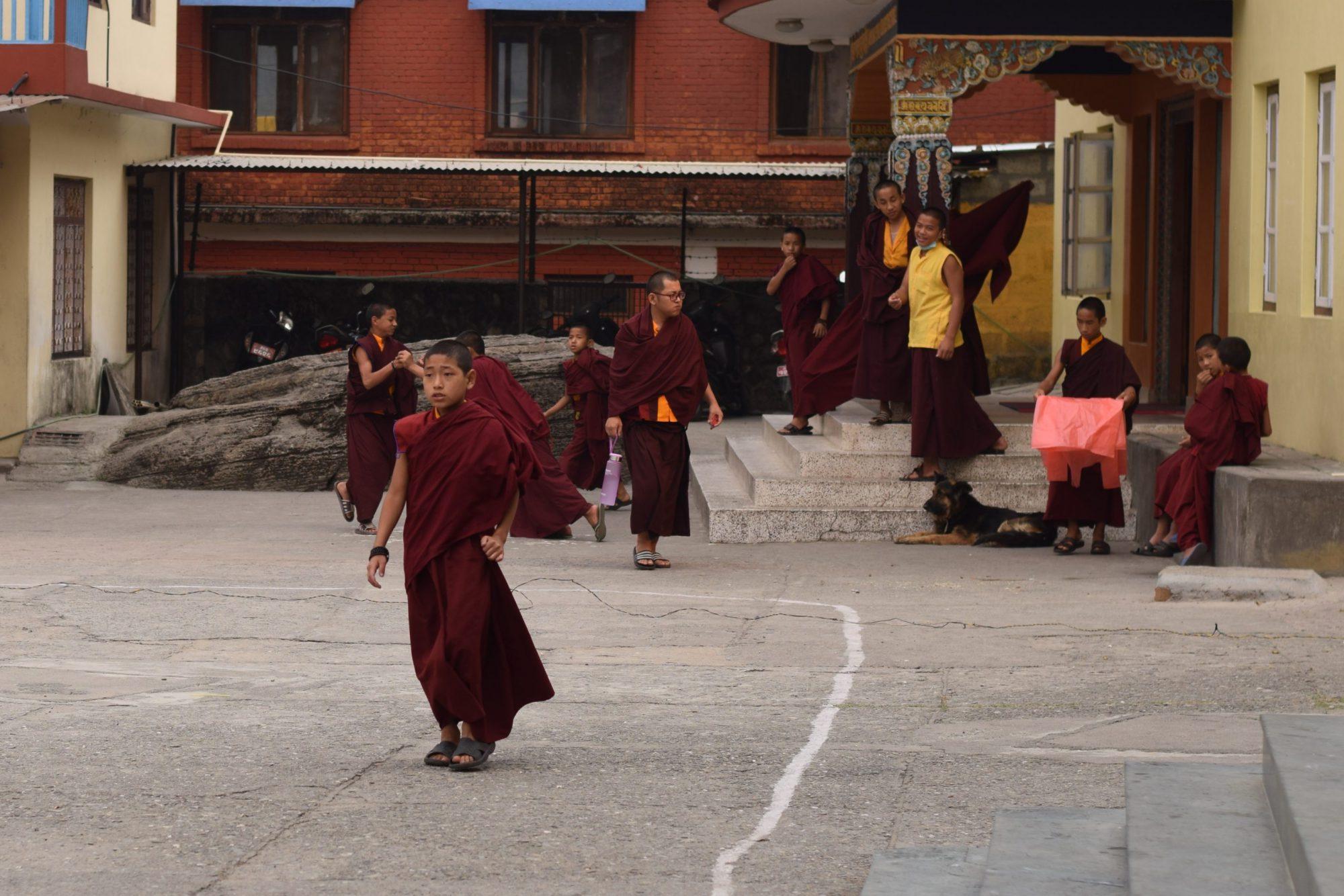 Tashi Palkhel tibetan refugee camp